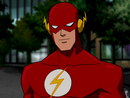 Flash Barry Allen Young Justice