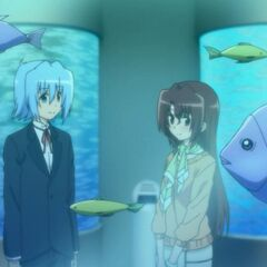 Hayate and Maria in the aquarium
