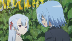 Hayate confronting Suzune