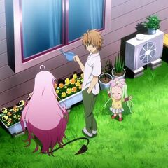 Rito watering the plants in his house before going to school with Lala