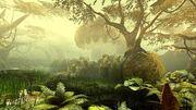 Mokon Woods