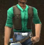 CattleShirt Looks