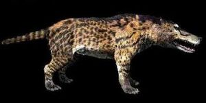 Andrewsarchus