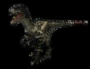 WWD Dromaeosaurus render