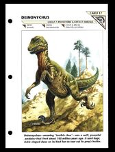 Wildlife fact file Deinonychus front
