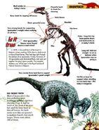 Dinosaur Identikit Iguanodon 3