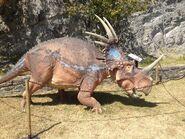 Styracosaurus restoration GeoModel IMG 7844