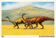 Plateosaurus-trading-card-1