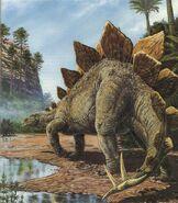 2 Stegosaurus