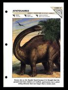 Wildlife fact file Apatosaurus front