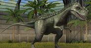 Gorgosaurus JW