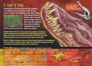 Deinosuchus back