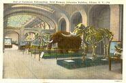 Mastodon-postcard-1000x653