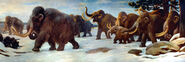 Wooly Mammoths AMNH mural