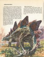 Stegosaurus Private Lives of Animals Prehistoric Animals