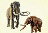 La-Brea-mammoth-mastodon-1000x6911-700x483