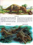 Gorgo Dinosaurs and Other Prehistoric Reptiles
