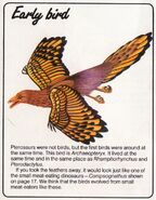 Archaeopteryx Be a Dinosaur Detective