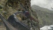 CBD1x2 PteranodonOnRockyCliff