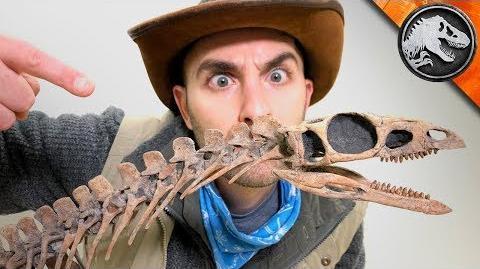 Jurassic World Explorers The First Dinosaur? Jurassic World