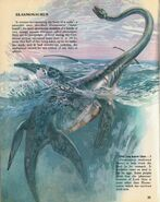 Elasmosaurus Private Lives of Animals Prehistoric Animals