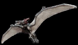 JW pteranodon
