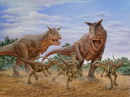 Carnotaurus-after-Gasparinisaurs