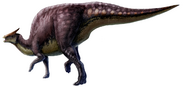 Saurolophus scalation