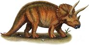 Triceratops-roger-hall-and-photo-researchers 1b1e