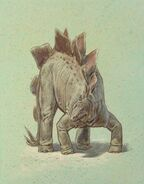 William D. Berry Stegosaurus.