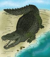 Deinosuchus hatcheri