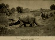 Animals of the past - an account of some of the creatures of the ancient world (1929) (18199010325)