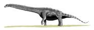 Argentinosaurus BW2