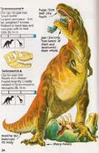 Tyrannosaurus Spotter's Guide to Dinosaurs