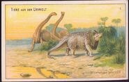 Brontosaurus and Triceratops Dr. Thompsons Seifenpulver