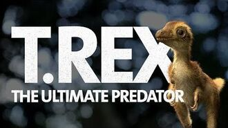 What Did a Baby T. rex Look Like? 🦖 T. rex The Ultimate Predator Now Open!