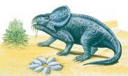 Protoceratops 2