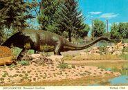 Diplodocus-3-1000x705
