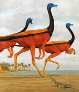 Gallimimus An Alphabet of Dinosaurs