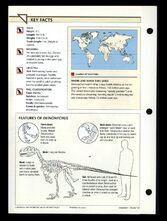 Wildlife fact file Deinonychus back
