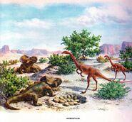 Oviraptor vs Protoceratops