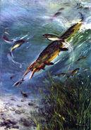 Mosasaurus by zdenek burian 1962