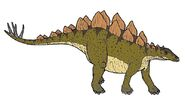 Stegosaurus 0684