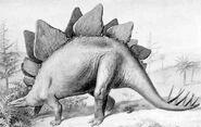 N2m stegosaurus