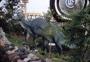 8-64Corythosaurus