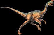 Oviraptor on black