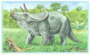 68+Triceratops