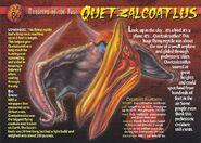 Quetzalcoatlus front