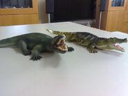 Deinosuchus 2 figures