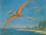 Pteranodonte di Charles Knight